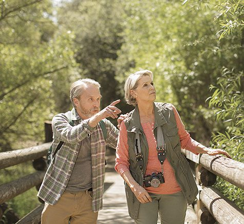 A man and a woman on a wooden bridge pointing at the scenery